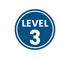 level 3 blue.png