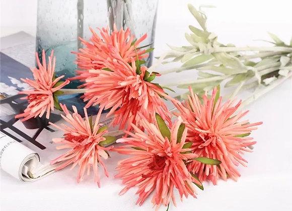 Flor de seda Compositae de tallo largo