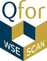 Qfor wse scan perspective.jpg.jpg