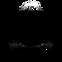 Beckon Technologies Company Logo PNG.png