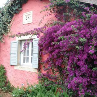Casa Lucia, Sgombou