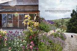 Garden feature writing for Country Style