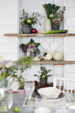 Location styling for Temple & Webster, photography by Denise Braki