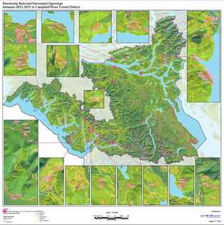EVQO and Harvested Openings for Campbell River Forest District