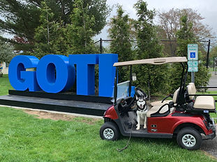 Daily Golf Cart Rentals in Geneva-on-the-Lake.  We DELIVER the cart to you where you direct us to at GOTL!