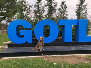 Remember and show off your trip to Geneva-on-the-Lake by taking a picture by the famous GOTL sign!