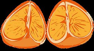 Orange_Quarters_Illus_Loose_02.png