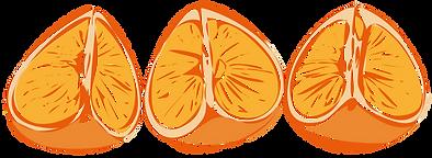 Orange_Quarters_Illus_Loose_03.png
