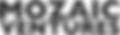 MZV - Logo Text.png