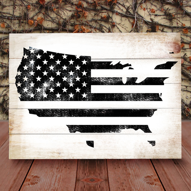 USA Country Flag
