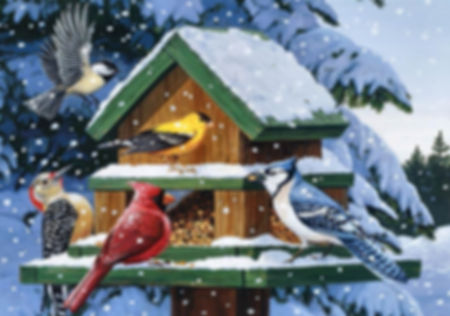 конкурс Мы морозною зимой птиц согреем д