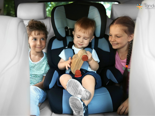 Speech and Language in the Car