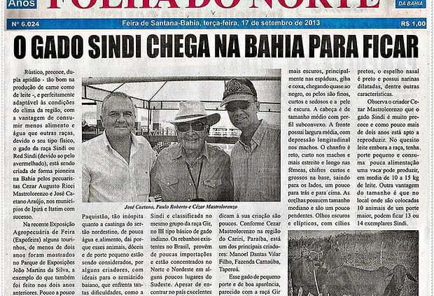 A Bahia agora tem Gado Sindi BRS