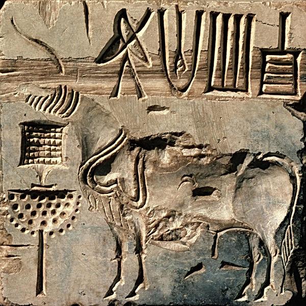 Restos arqueológicos de Mohenjo-daro