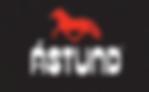 astund-logo-lp.png
