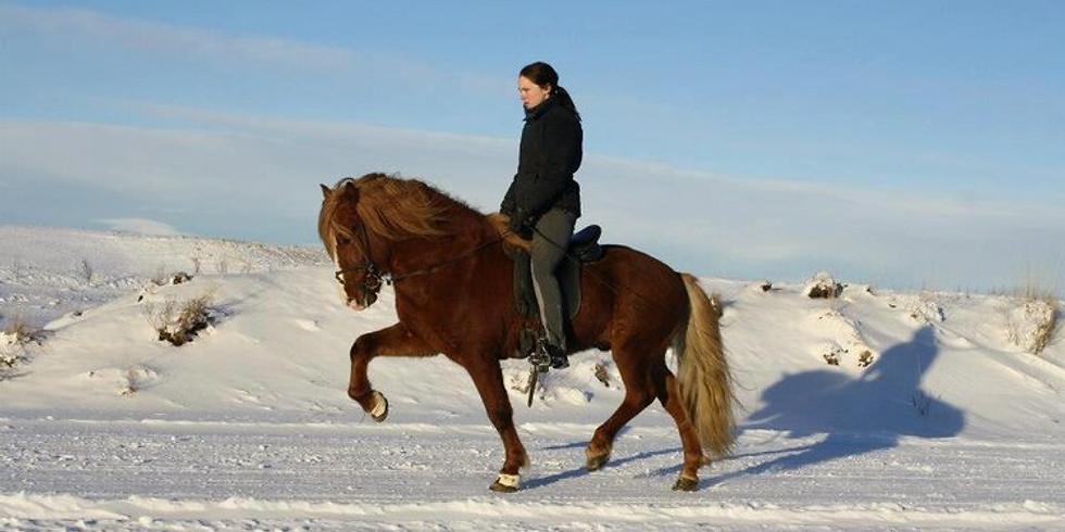 Caeli Cavanagh Riding Clinic (April 26)