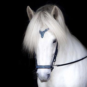 Hrimnir Heritage Headstall Blue Lagoon - Flugar Equestrian