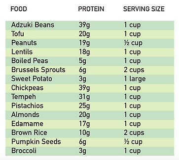 Plant Based Protein.png