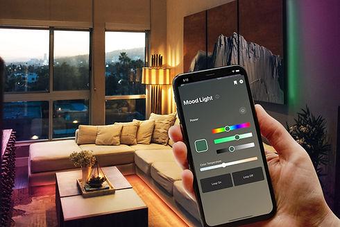 living-room (2).jpg