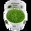 Thumbnail: Utricularia graminifolia, Tropica 1-2 Grow