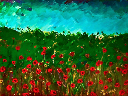 POPPIES BEFORE THE STORM.jpeg