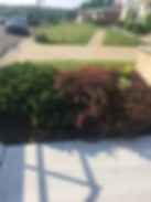 Lanscaping