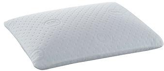 2 in 1 Duo Core Pillow