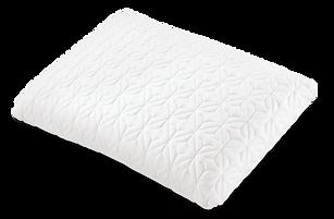 iComfort Directios Pillow
