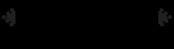 RITCH NETWERK LOGO zwart.png