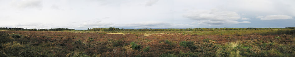Panorama_of_the_Battle_of_Culloden.jpg