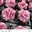 Thumbnail: (50 unidades)  topos para bem casados, alfajor e brownie