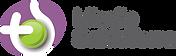 Logo MSDT 1.png