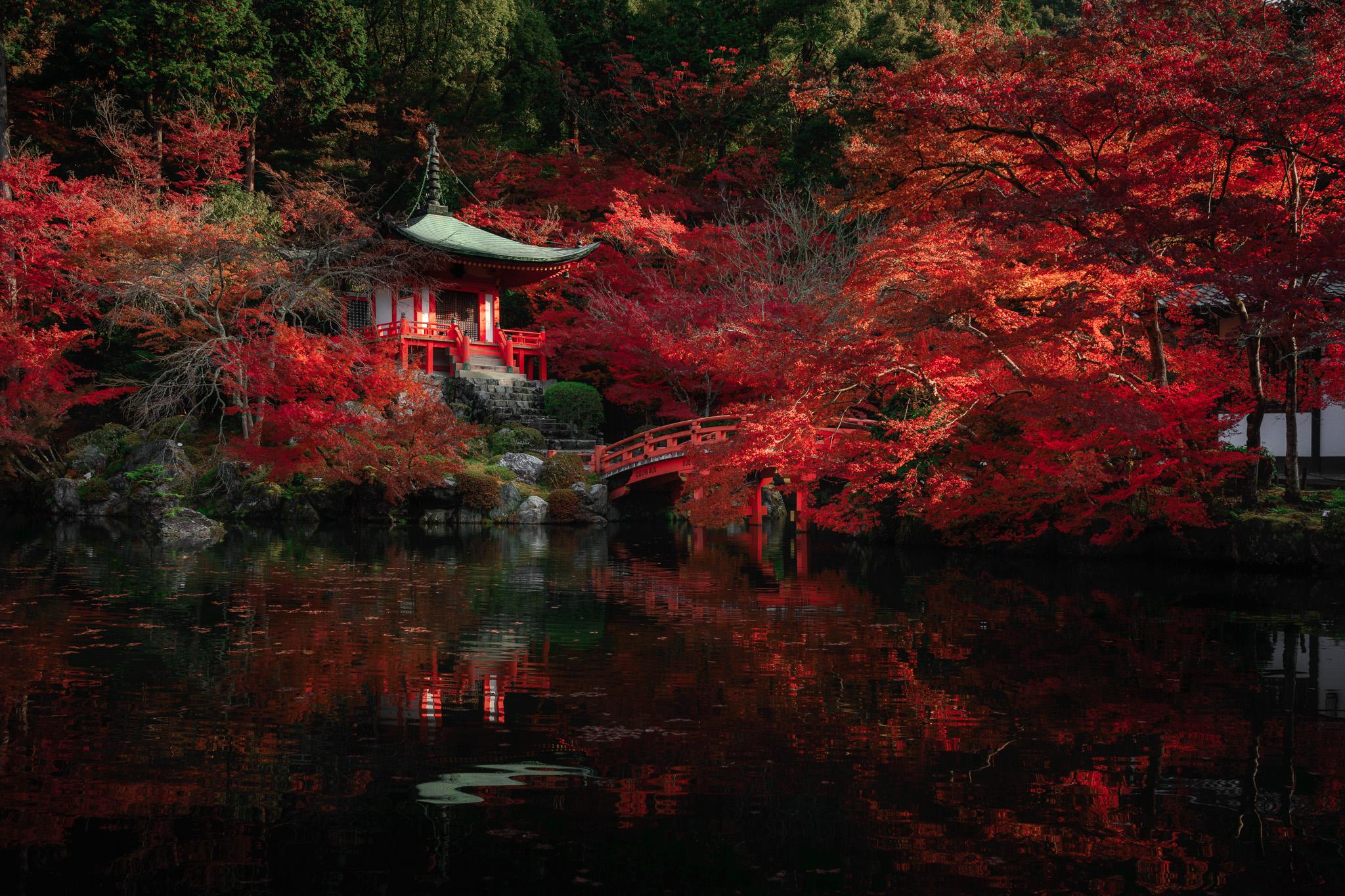 Japan Kyoto Autumn 2019