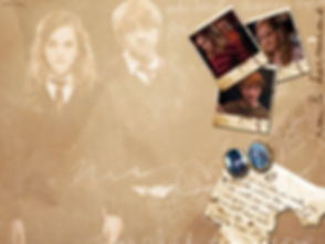 Подложка Гарри Поттер.jpg