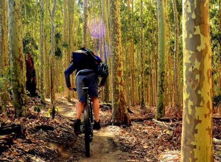 bikeNOW Mountain Bike Day at Lysterfield MTB Park