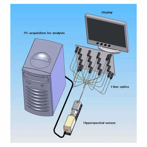 멀티 채널 분광 측정 시스템