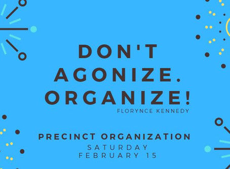We NEED Democrats: Precinct Organization THIS Saturday, Feb. 15