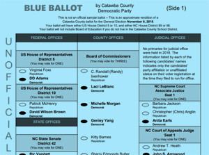 Blue Ballot for Election Day