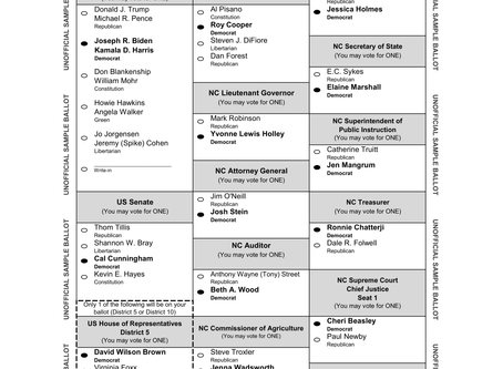 Blue Ballot and Voting Info