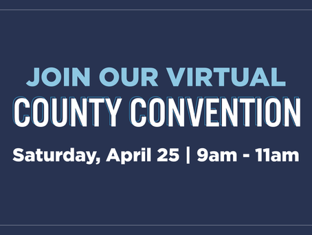 VIRTUAL COUNTY CONVENTION