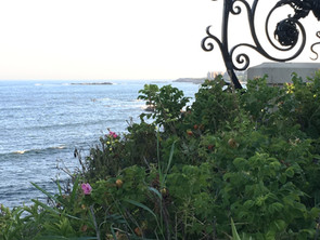 View from the cliff walk Newport RI