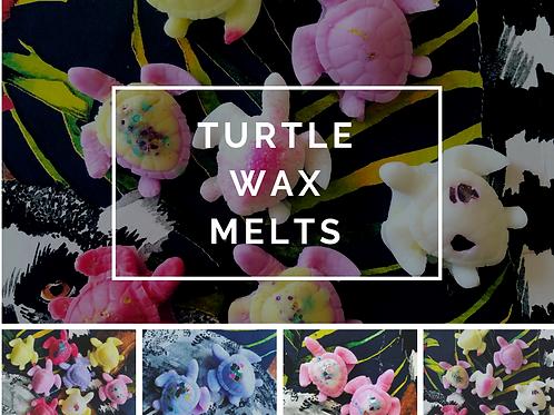 Turtle wax melts (x2)