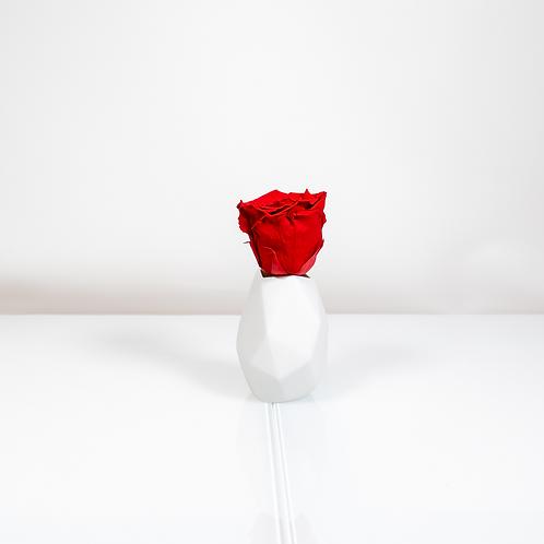 Rosenthal Vase Surface mit 1 Infinity Rose