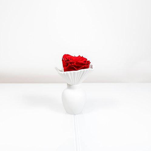 Rosenthal Vase Falda mit 1 Infinity Rose