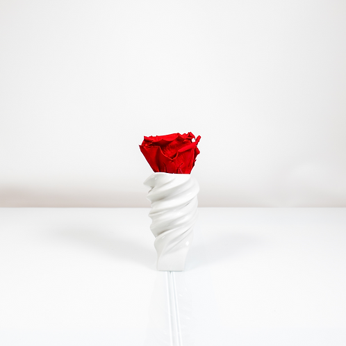 Rosenthal Vase Squall mit 1 Infinity Rose