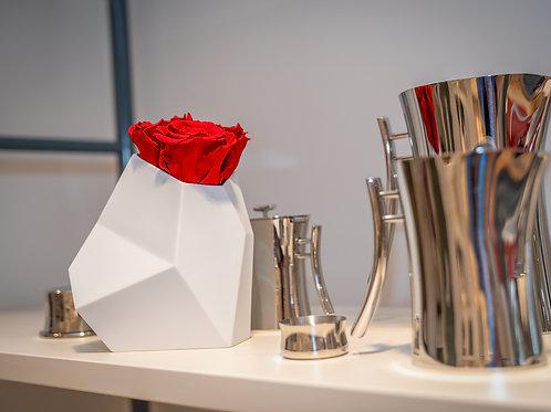 Rosenthal Vase Surface mit 3 Infinity Rosen