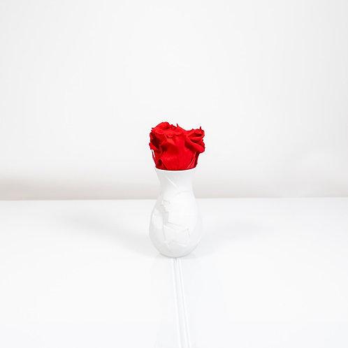 Rosenthal Vase Vase of Phases mit 1 Infinity Rose