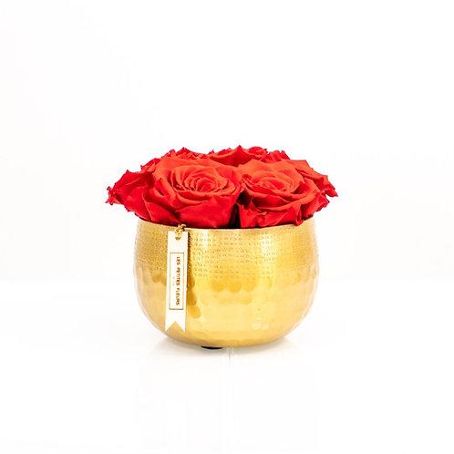 Golden Darling mit 6-8 Infinity Rosen