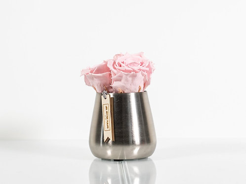 Silver Cutie mit 3 Rosen