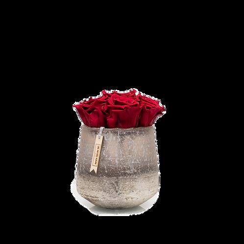 Sparkling Grey mit 6-8 Infinity Rosen
